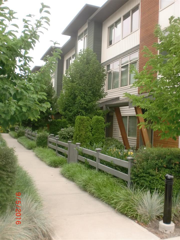 Townhouse at 31 8473 163 STREET, Unit 31, Surrey, British Columbia. Image 5