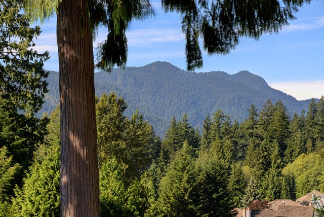 Half-duplex at 5625 EAGLE COURT, North Vancouver, British Columbia. Image 20