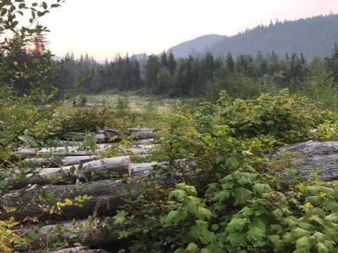 Vacant Land at 1119 COPPER DRIVE, Squamish, British Columbia. Image 5