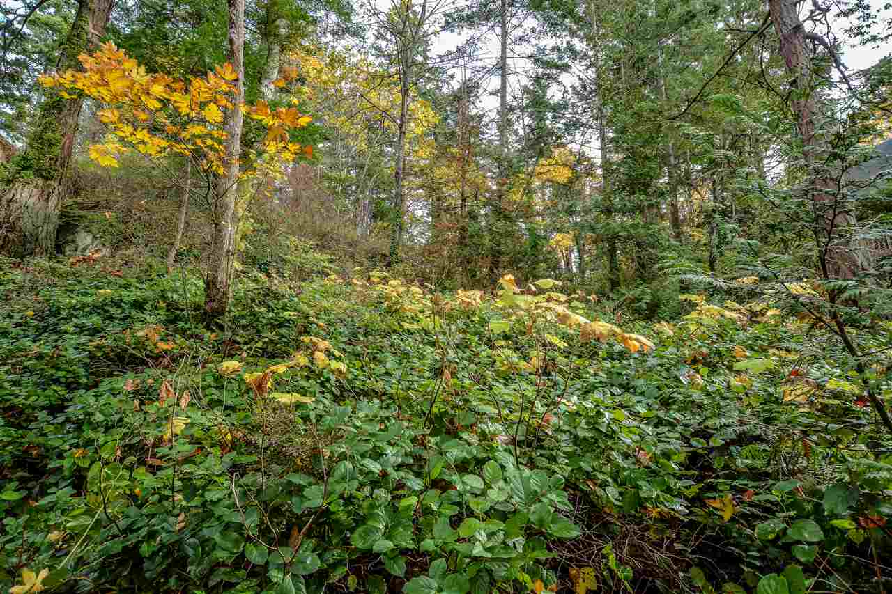 Vacant Land at 38 PASSAGE ISLAND, West Vancouver, British Columbia. Image 6