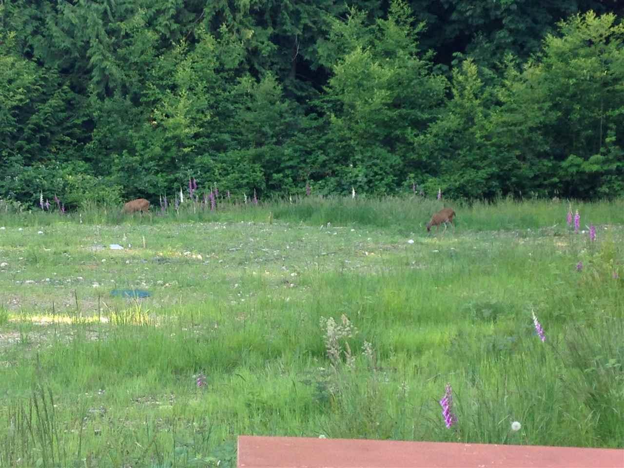 Vacant Land at 777 COURTNEY ROAD, Sunshine Coast, British Columbia. Image 7