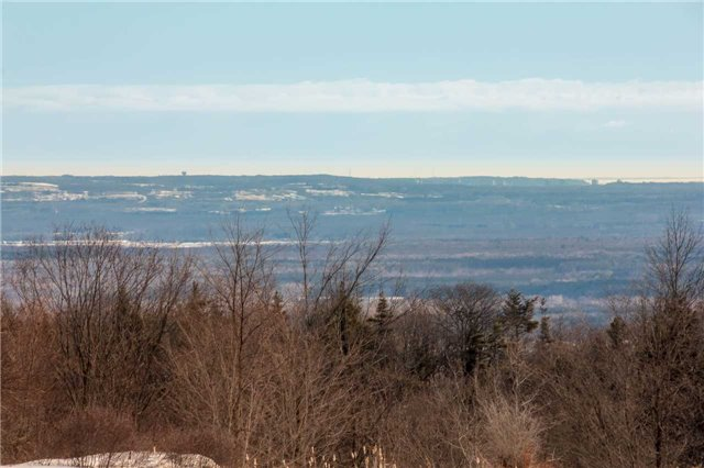 Vacant Land at 3767 5 Nottawasaga Conces Rd S, Clearview, Ontario. Image 1