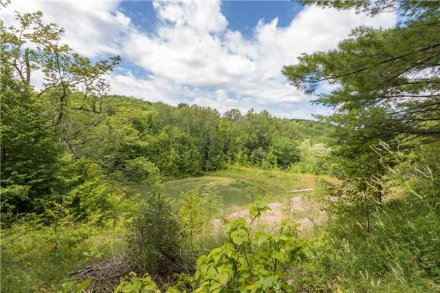 Vacant Land at 3767 5 Nottawasaga Conces Rd S, Clearview, Ontario. Image 4
