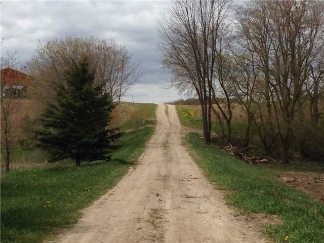 Vacant Land at 1148 Concession Rd 6 S Rd, Clearview, Ontario. Image 5