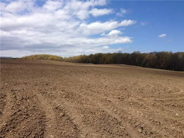 Vacant Land at 1148 Concession Rd 6 S Rd, Clearview, Ontario. Image 7