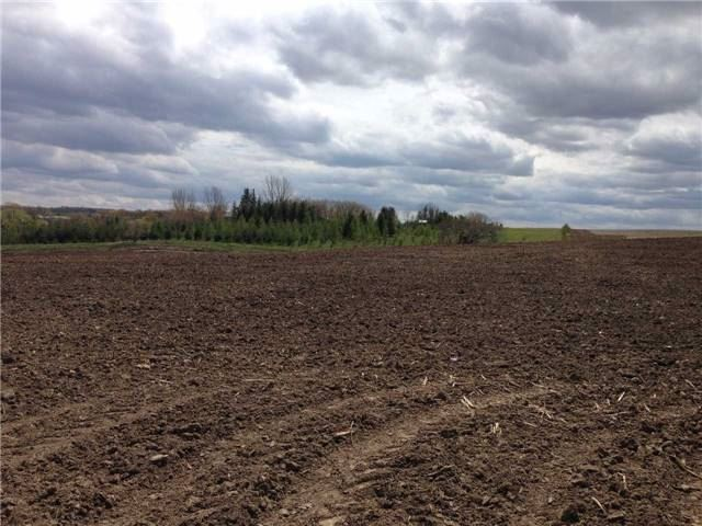 Vacant Land at 1148 Concession Rd 6 S Rd, Clearview, Ontario. Image 10