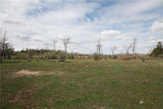 Vacant Land at 1205 Concession 7 Rd, Ramara, Ontario. Image 11