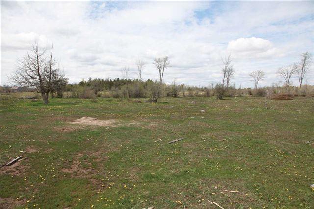 Vacant Land at 1205 Concession 7 Rd, Ramara, Ontario. Image 15