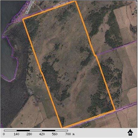 Vacant Land at 1205 Concession 7 Rd, Ramara, Ontario. Image 8