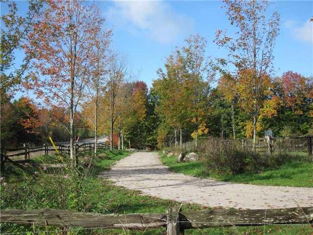 Farm at 1614 Horseshoe Valley Rd E, Oro-Medonte, Ontario. Image 12
