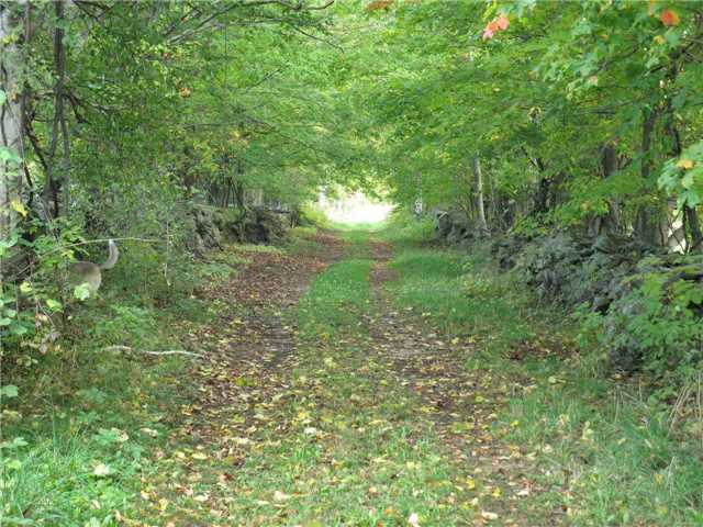 Farm at 1614 Horseshoe Valley Rd E, Oro-Medonte, Ontario. Image 15