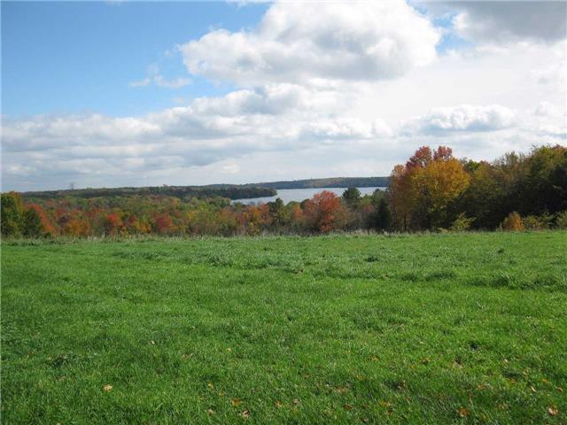 Farm at 1614 Horseshoe Valley Rd E, Oro-Medonte, Ontario. Image 17