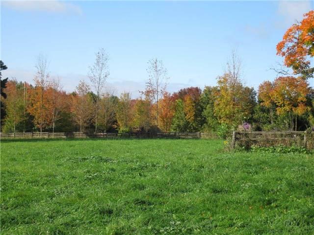 Farm at 1614 Horseshoe Valley Rd E, Oro-Medonte, Ontario. Image 18