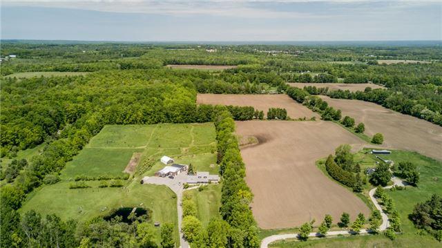 Farm at 1614 Horseshoe Valley Rd E, Oro-Medonte, Ontario. Image 5