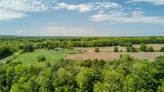 Farm at 1614 Horseshoe Valley Rd E, Oro-Medonte, Ontario. Image 8