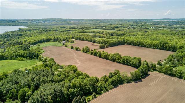 Farm at 1614 Horseshoe Valley Rd E, Oro-Medonte, Ontario. Image 9