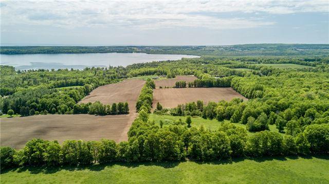 Farm at 1614 Horseshoe Valley Rd E, Oro-Medonte, Ontario. Image 10