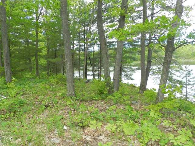 Vacant Land at 27 Koetsier Lane, Georgian Bay, Ontario. Image 6