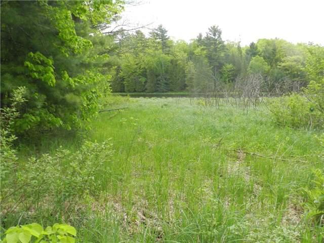 Vacant Land at 27 Koetsier Lane, Georgian Bay, Ontario. Image 7