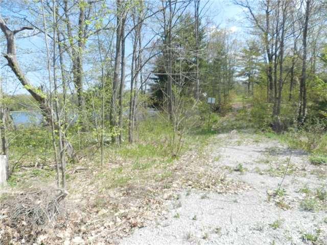 Vacant Land at 27 Koetsier Lane, Georgian Bay, Ontario. Image 9