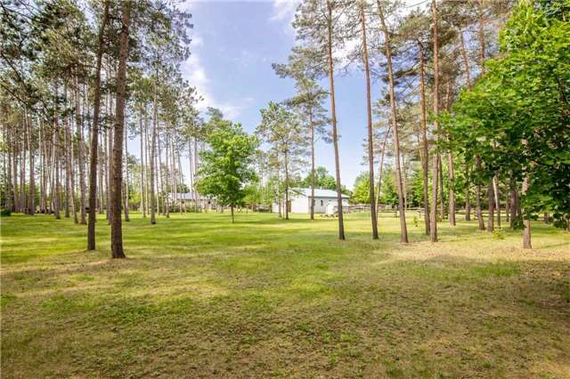Detached at 6216 Sunnidale Tos. Town Line, Clearview, Ontario. Image 10