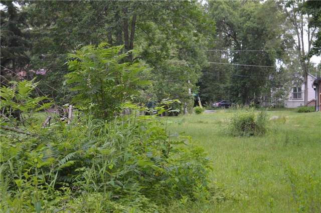 Vacant Land at 2765 Maple Tr, Ramara, Ontario. Image 11