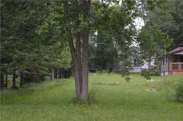 Vacant Land at 2765 Maple Tr, Ramara, Ontario. Image 12