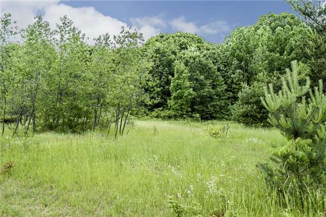 Vacant Land at 21 Simpresca Rd, Penetanguishene, Ontario. Image 4