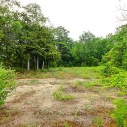Vacant Land at 31 Trew Ave, Tiny, Ontario. Image 1