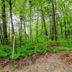 Vacant Land at 14 Glenforest Tr, Tiny, Ontario. Image 1