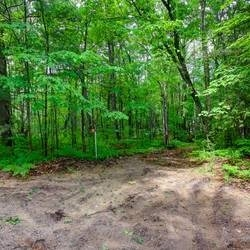 Vacant Land at 14 Glenforest Tr, Tiny, Ontario. Image 4