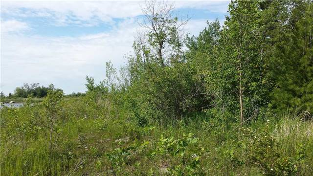Vacant Land at 42 Methodist Island, Tay, Ontario. Image 3
