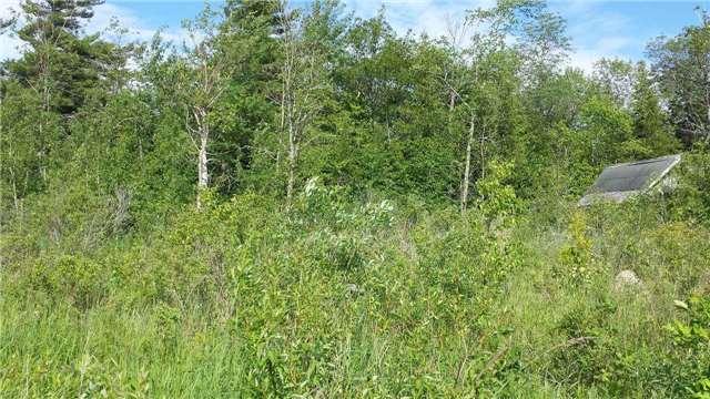 Vacant Land at 40 Methodist Island, Tay, Ontario. Image 8