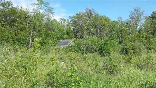 Vacant Land at 40 Methodist Island, Tay, Ontario. Image 9