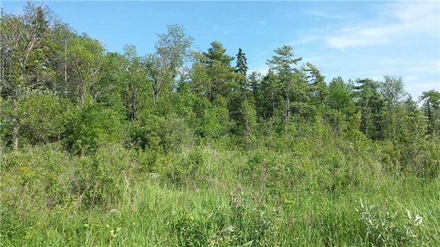 Vacant Land at 40 Methodist Island, Tay, Ontario. Image 2