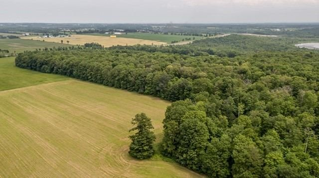 Vacant Land at 3147 Old Second South Rd, Springwater, Ontario. Image 3
