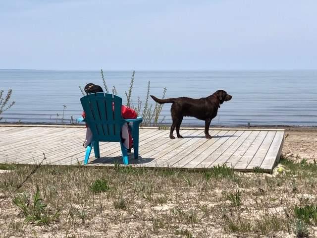 Detached at 966 Shore  Lane, Wasaga Beach, Ontario. Image 9