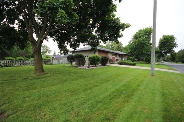Detached at 99 Melrose Ave, Barrie, Ontario. Image 12