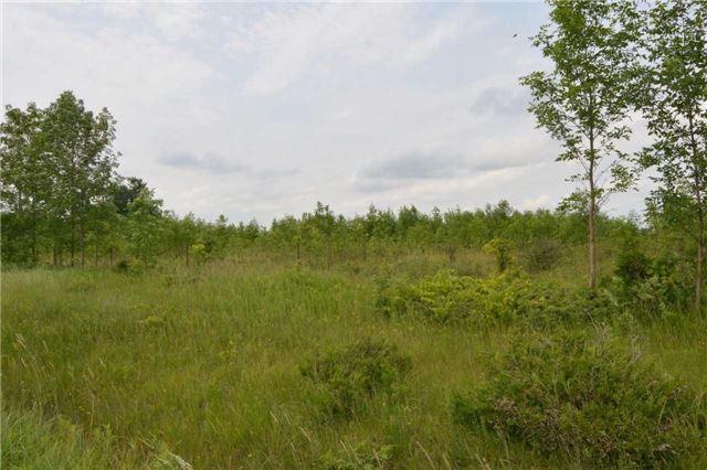 Detached at 3590 County Road 47 Rd, Ramara, Ontario. Image 7