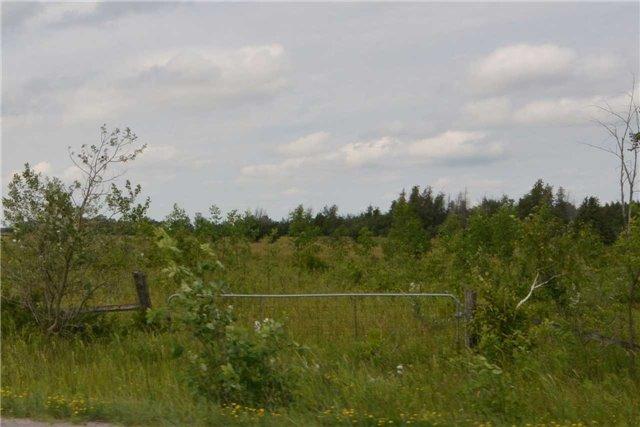 Detached at 3590 County Road 47 Rd, Ramara, Ontario. Image 9
