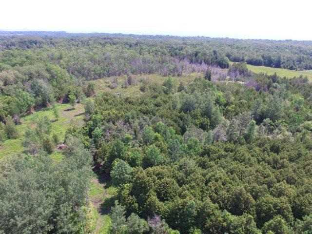 Vacant Land at 1201 Ridge Rd E, Oro-Medonte, Ontario. Image 5