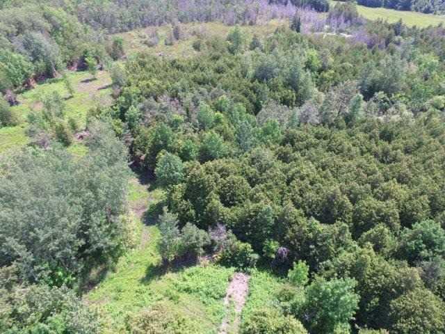 Vacant Land at 1201 Ridge Rd E, Oro-Medonte, Ontario. Image 6