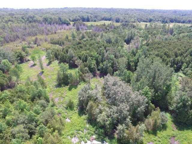 Vacant Land at 1201 Ridge Rd E, Oro-Medonte, Ontario. Image 8