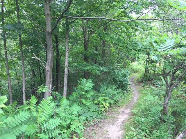 Vacant Land at 11 Pine Point, Oro-Medonte, Ontario. Image 2