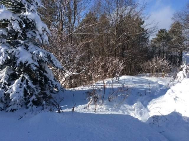 Vacant Land at 11 Pine Point, Oro-Medonte, Ontario. Image 8