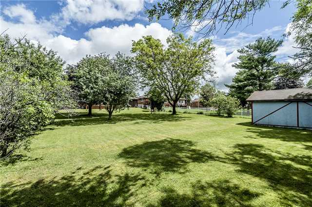 Detached at 219 Warnica Rd, Barrie, Ontario. Image 2
