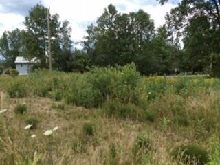 Vacant Land at 4097 Dalrymple Dr, Ramara, Ontario. Image 10