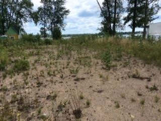 Vacant Land at 4097 Dalrymple Dr, Ramara, Ontario. Image 5