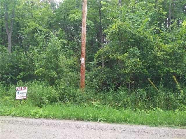 Vacant Land at 67 Wozniak Rd, Penetanguishene, Ontario. Image 5