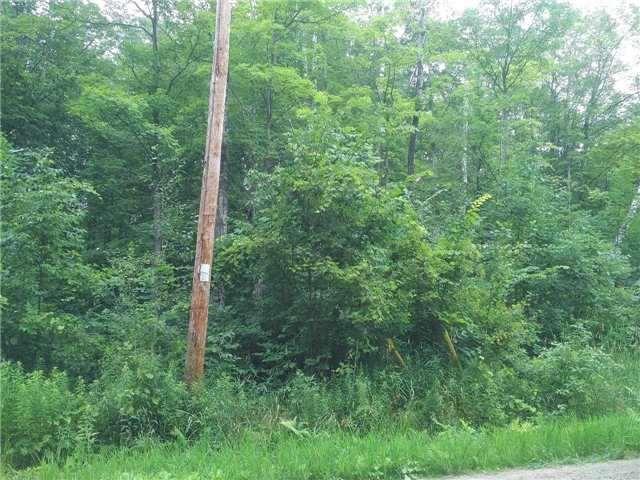 Vacant Land at 67 Wozniak Rd, Penetanguishene, Ontario. Image 7
